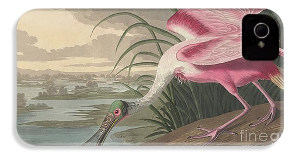 Roseate Spoonbill IPhone 4s Case
