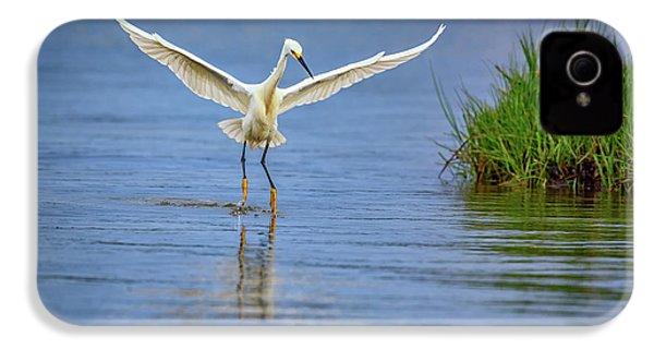A Snowy Egret Dip-fishing IPhone 4s Case by Rick Berk