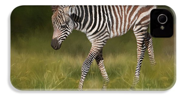A Walk On The Wild Side IPhone 4s Case by Donna Kennedy