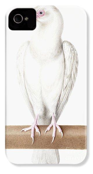 Albino Crow IPhone 4s Case by Nicolas Robert