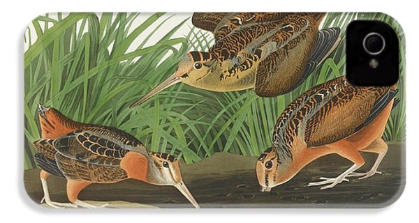 American Woodcock IPhone 4s Case by John James