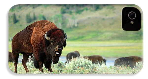 Angry Buffalo IPhone 4s Case by Todd Klassy