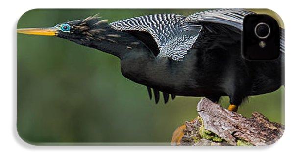 Anhinga Anhinga Anhinga, Costa Rica IPhone 4s Case by Panoramic Images