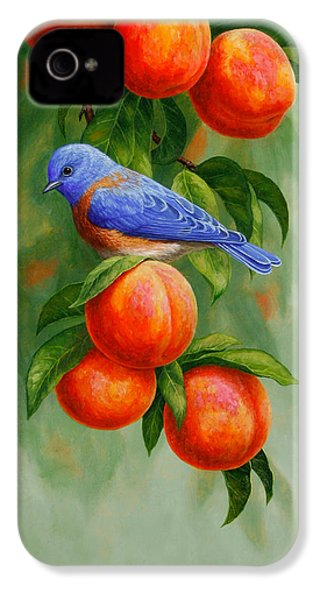 Bluebird And Peaches Greeting Card 2 IPhone 4s Case by Crista Forest