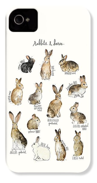Rabbits And Hares IPhone 4s Case by Amy Hamilton