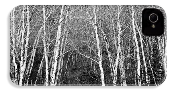 Aspen Forest Black And White Print IPhone 4s Case