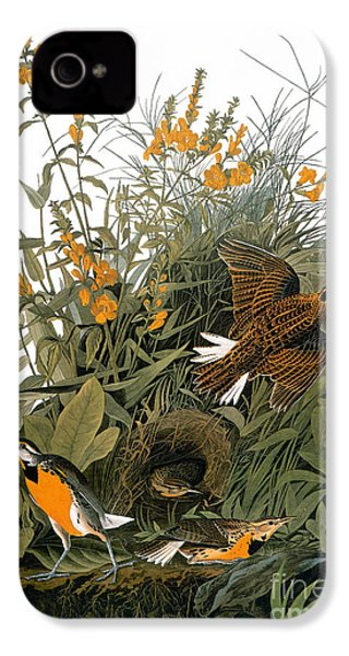 Audubon: Meadowlark IPhone 4s Case by Granger