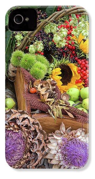 Autumn Abundance IPhone 4s Case by Tim Gainey