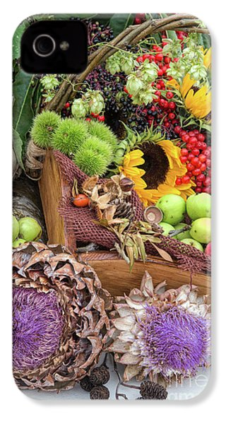 Autumn Abundance IPhone 4s Case by Tim Gainey