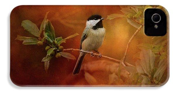 Autumn Day Chickadee Bird Art IPhone 4s Case by Jai Johnson