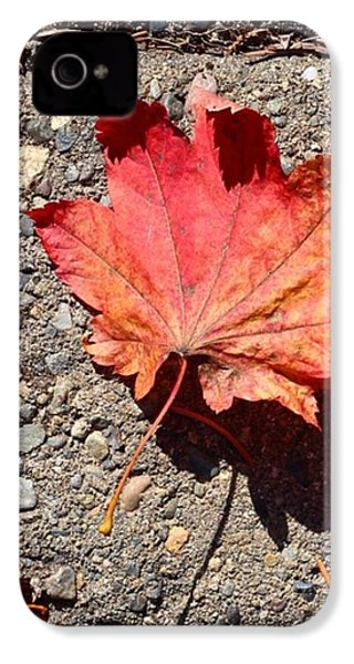 Autumn Is Here IPhone 4s Case