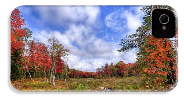 IPhone 4s Case featuring the photograph Autumn On The Stream by David Patterson