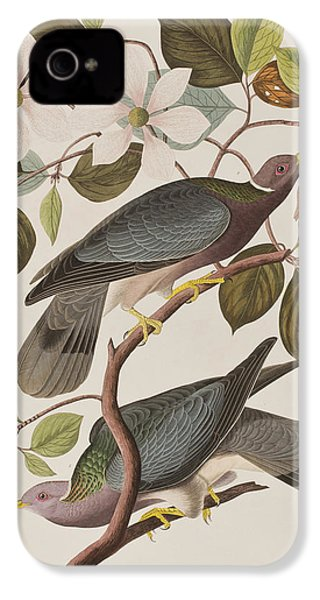 Band-tailed Pigeon  IPhone 4s Case by John James Audubon