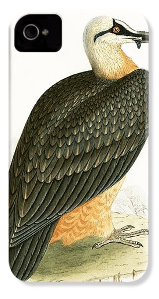Bearded Vulture IPhone 4s Case by English School