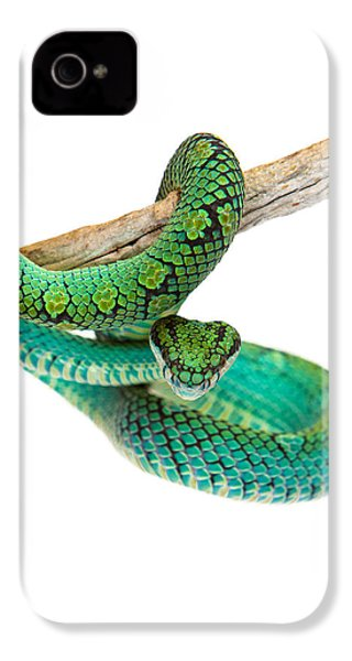 Beautiful Sri Lankan Palm Viper IPhone 4s Case