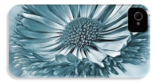Bellis In Cyan  #flower #flowers IPhone 4s Case