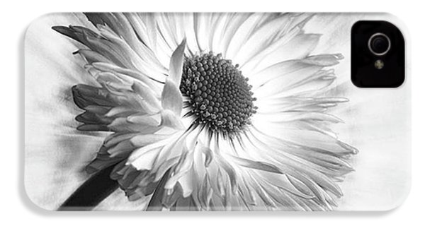 Bellis In Mono  #flower #flowers IPhone 4s Case