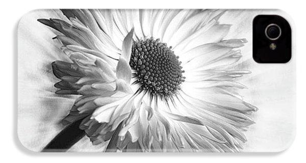 Bellis In Mono  #flower #flowers IPhone 4s Case by John Edwards