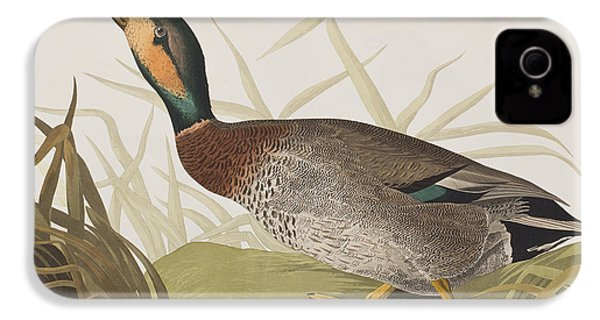 Bemaculated Duck IPhone 4s Case by John James Audubon