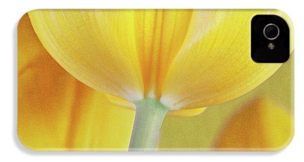 Beneath The Yellow Tulip IPhone 4s Case by Tom Mc Nemar