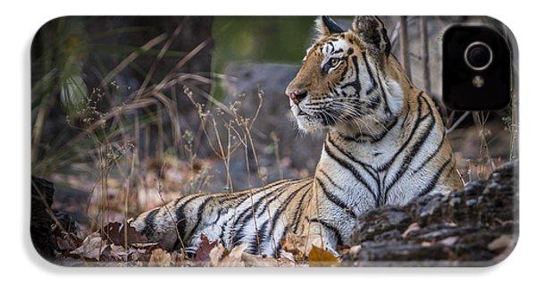 Bengal Tiger IPhone 4s Case by Hitendra SINKAR