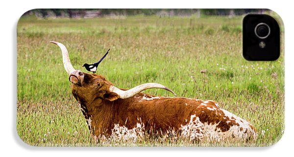 Best Friends - Texas Longhorn Magpie IPhone 4s Case by TL Mair