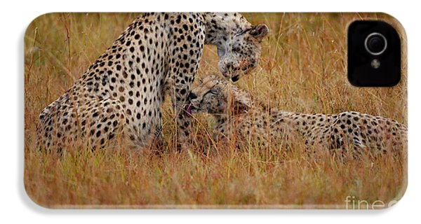 Best Of Friends IPhone 4s Case by Nichola Denny