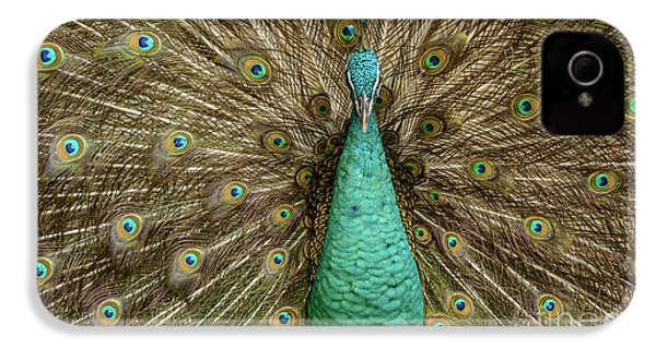 Peacock IPhone 4s Case by Werner Padarin