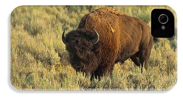 Bison IPhone 4s Case