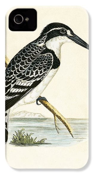 Black And White Kingfisher IPhone 4s Case by English School