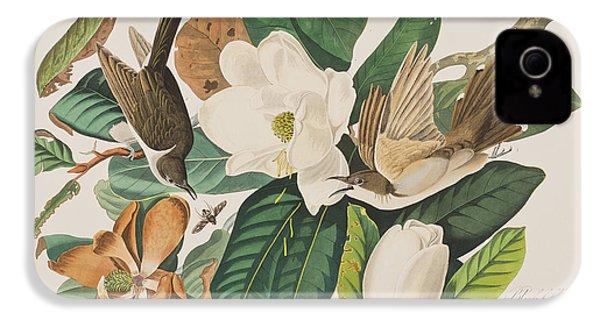 Black Billed Cuckoo IPhone 4s Case by John James Audubon
