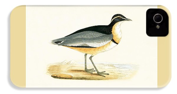 Black Headed Plover IPhone 4s Case by English School