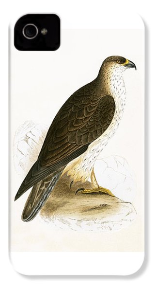 Bonelli's Eagle IPhone 4s Case by English School