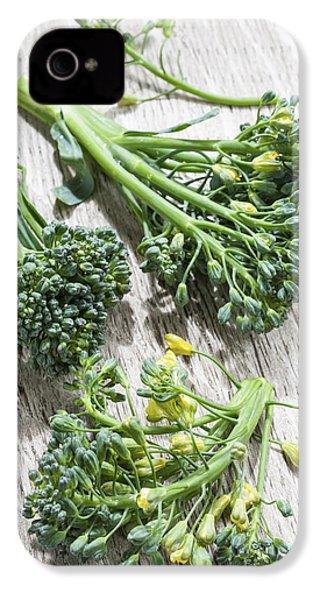 Broccoli Florets IPhone 4s Case by Elena Elisseeva