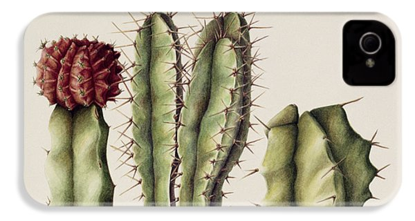 Cacti IPhone 4s Case by Annabel Barrett