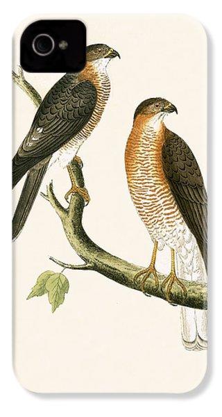 Calcutta Sparrow Hawk IPhone 4s Case by English School