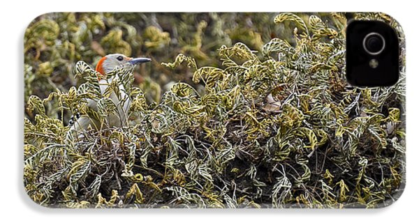 Camouflaged Red-bellied Woodpecker IPhone 4s Case