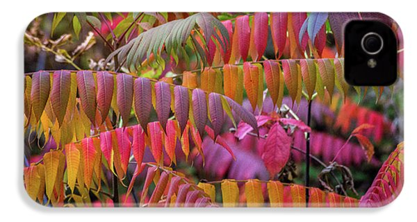 IPhone 4s Case featuring the photograph Carnival Of Autumn Color by Bill Pevlor