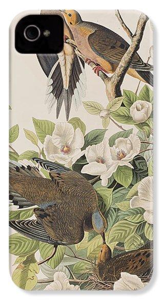 Carolina Turtle Dove IPhone 4s Case by John James Audubon
