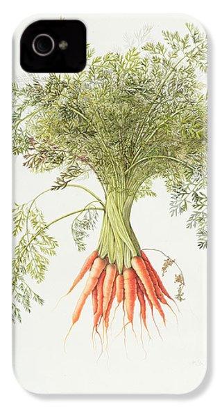 Carrots IPhone 4s Case by Margaret Ann Eden