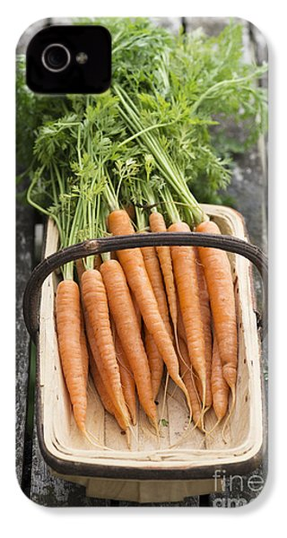Carrots IPhone 4s Case by Tim Gainey