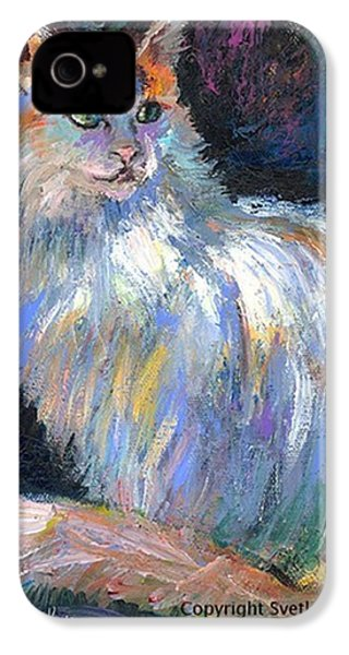 Cat In A Sun Painting By Svetlana IPhone 4s Case
