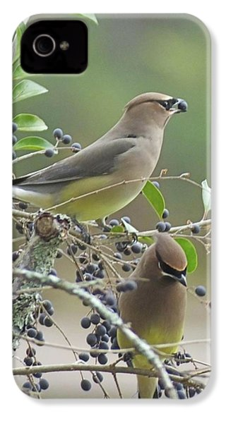 Cedar Wax Wings IPhone 4s Case by Lizi Beard-Ward