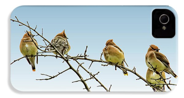Cedar Waxwings IPhone 4s Case by Geraldine Scull