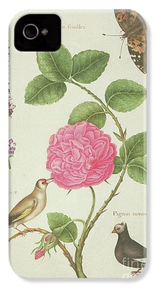 Centifolia Rose, Lavender, Tortoiseshell Butterfly, Goldfinch And Crested Pigeon IPhone 4s Case by Nicolas Robert