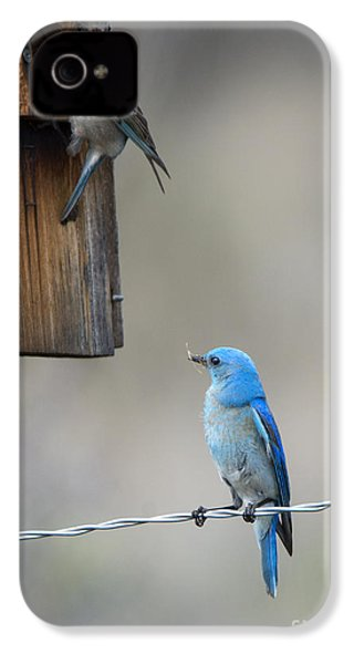 Checking The Nest IPhone 4s Case by Mike Dawson
