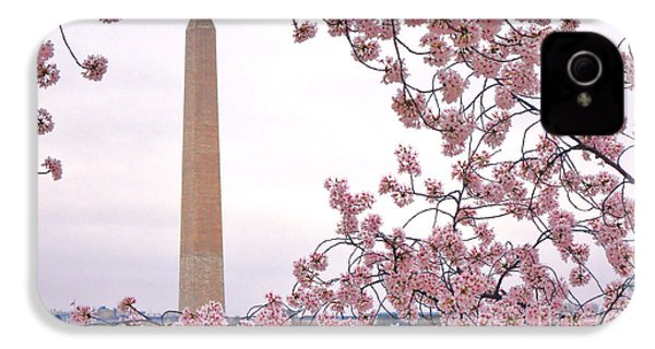 Cherry Washington IPhone 4s Case by Olivier Le Queinec