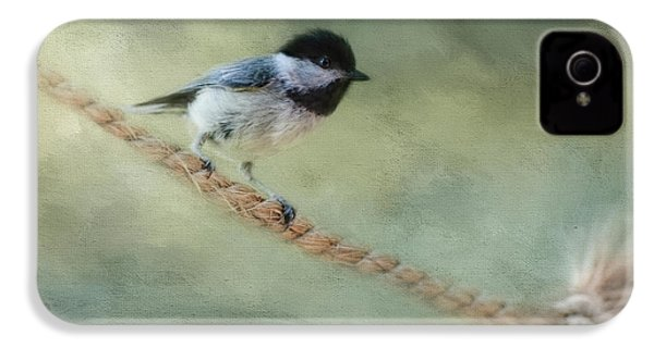 Chickadee At The Shore IPhone 4s Case by Jai Johnson