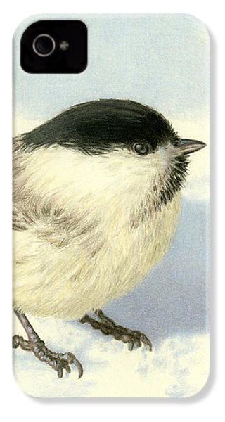 Chilly Chickadee IPhone 4s Case by Sarah Batalka