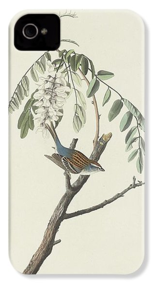 Chipping Sparrow IPhone 4s Case by Rob Dreyer
